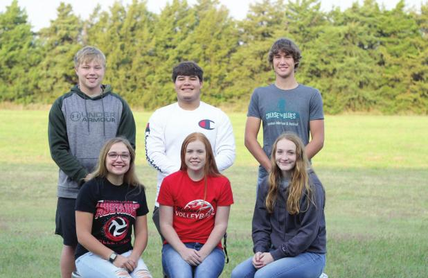 Sylvan-Lucas announces Homecoming Candidates