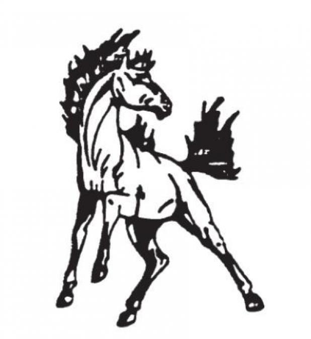 Mustangs continue winning streak!