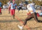 Sylvan-Lucas wins opening round playoff game